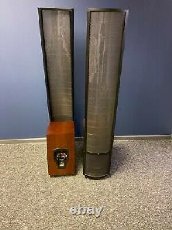 Martin Logan Theos hybrid electrostatic stereo speakers boxed ideal audio