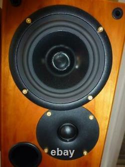 Ruark Icon Audiophile Speakers-Fantastic Sound