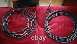 Audio Note Lexus LX 96 Câble D'enceinte 2 M Bi Filaire Paire Stéréo
